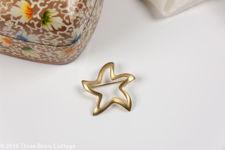 Monet Star Brooch